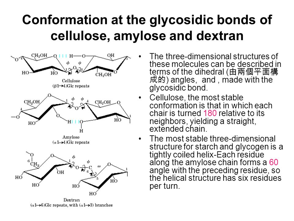 Conformation at the glycosidic bonds of cellulose, amylose and dextran The three-dimensional structures of these molecules can be described in terms of the dihedral ( 由兩個平面構 成的 ) angles, and, made with the glycosidic bond.