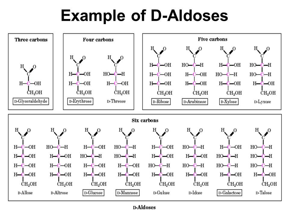 Example of D-Aldoses
