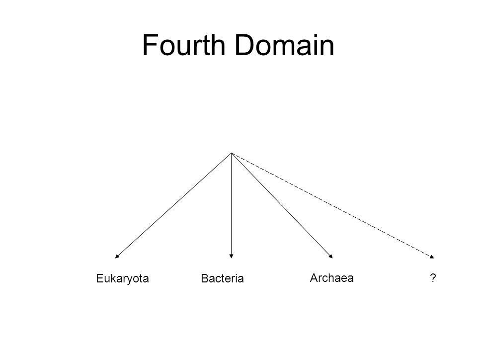 Fourth Domain EukaryotaBacteria Archaea