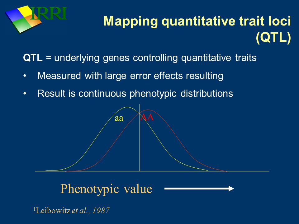 aa AA Phenotypic value 1 Leibowitz et al., 1987 QTL = underlying genes controlling quantitative traits Measured with large error effects resulting Result is continuous phenotypic distributions Mapping quantitative trait loci (QTL)