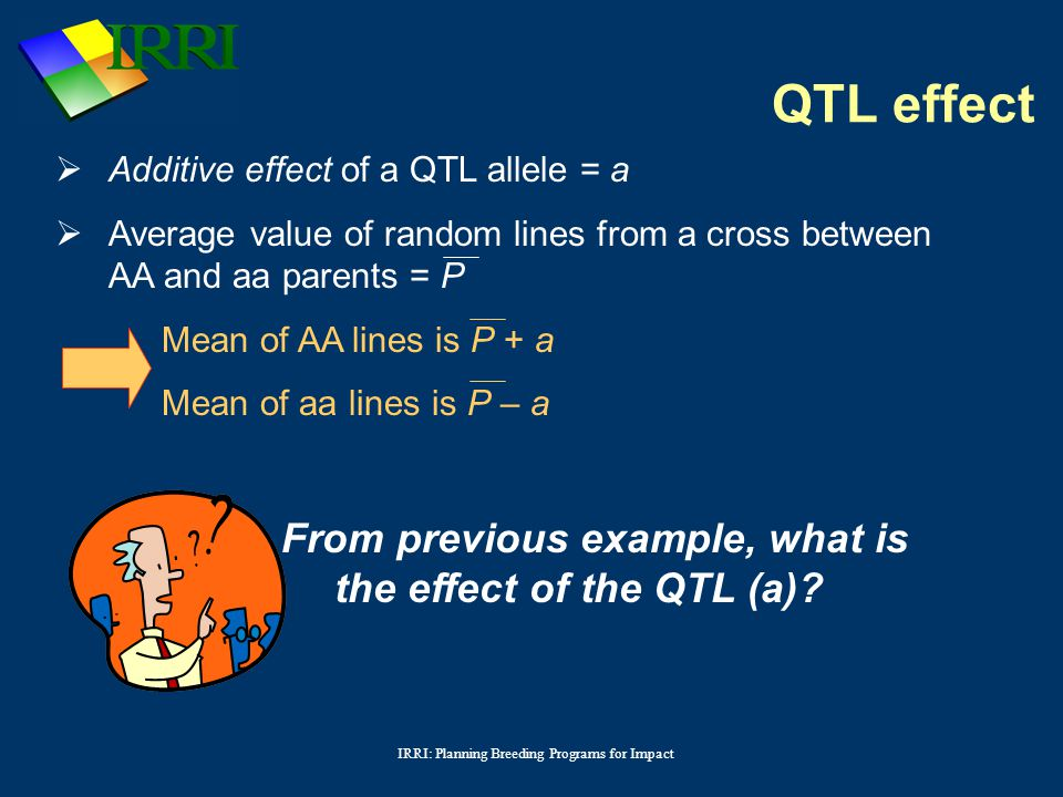 IRRI: Planning Breeding Programs for Impact  Additive effect of a QTL allele = a  Average value of random lines from a cross between AA and aa parents = P Mean of AA lines is P + a Mean of aa lines is P – a From previous example, what is the effect of the QTL (a).