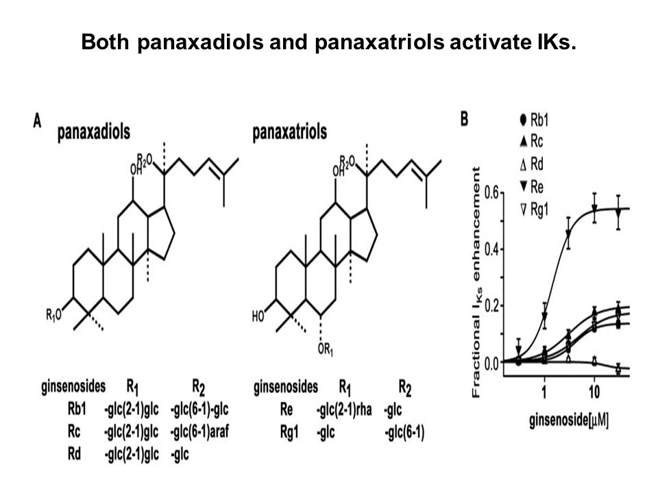 Effects of IKs blocker and ICa,L blocker on A23187-induced APD shortening