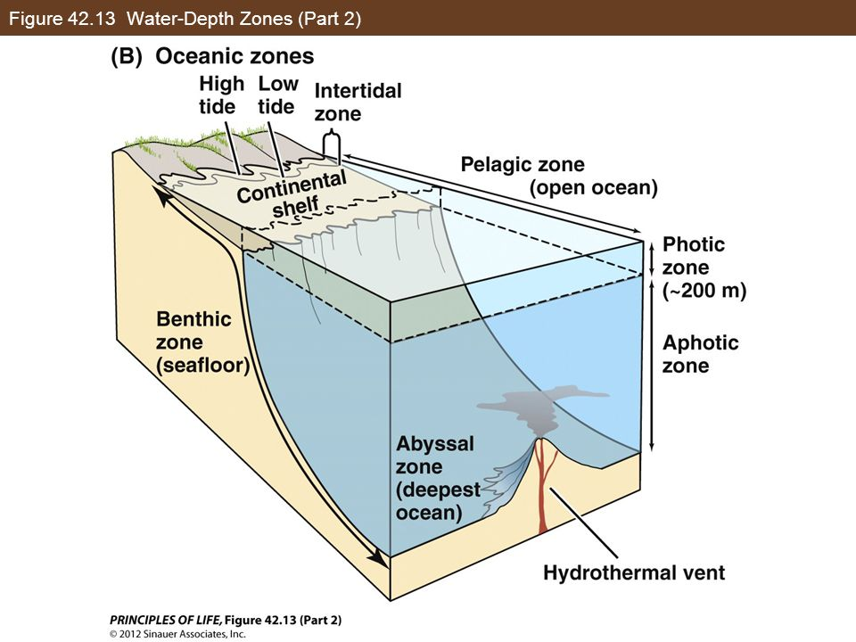 Figure 42.13 Water-Depth Zones (Part 2)
