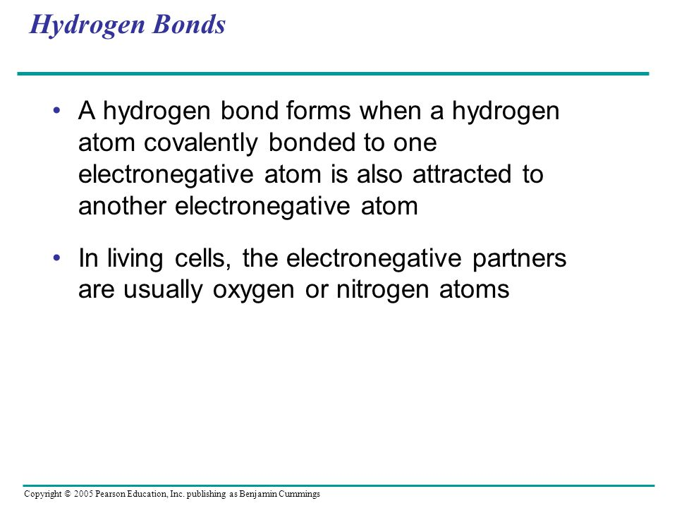 Copyright © 2005 Pearson Education, Inc. publishing as Benjamin Cummings Hydrogen Bonds A hydrogen bond forms when a hydrogen atom covalently bonded t