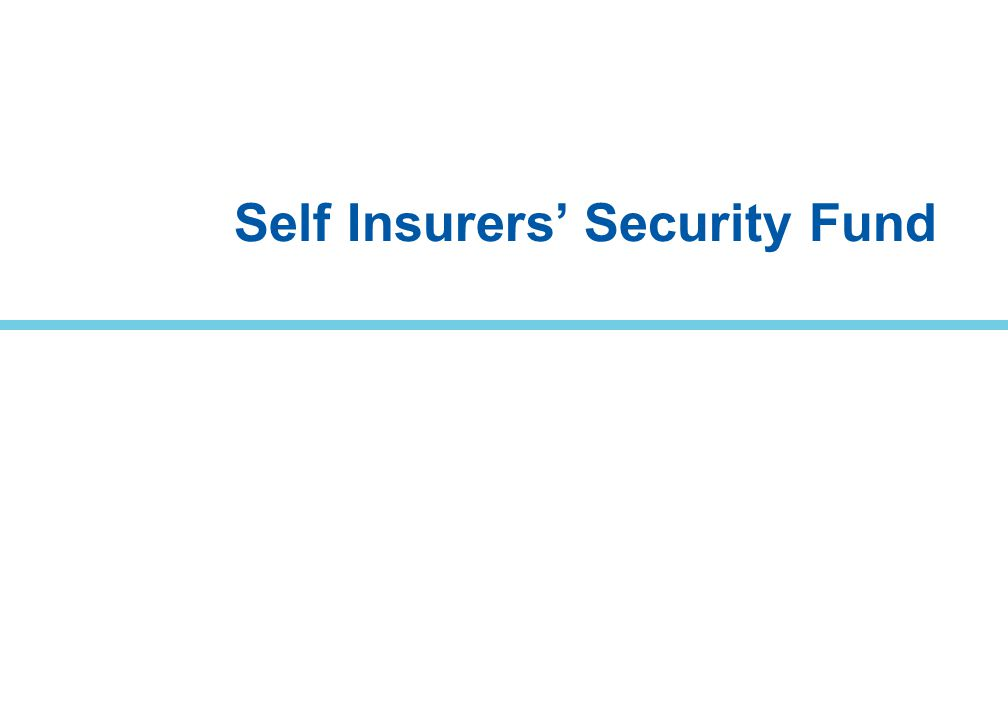 Self Insurers' Security Fund