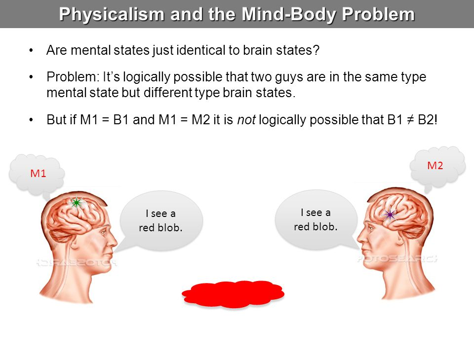 Physicalism and the Mind-Body Problem Are mental states just identical to brain states.