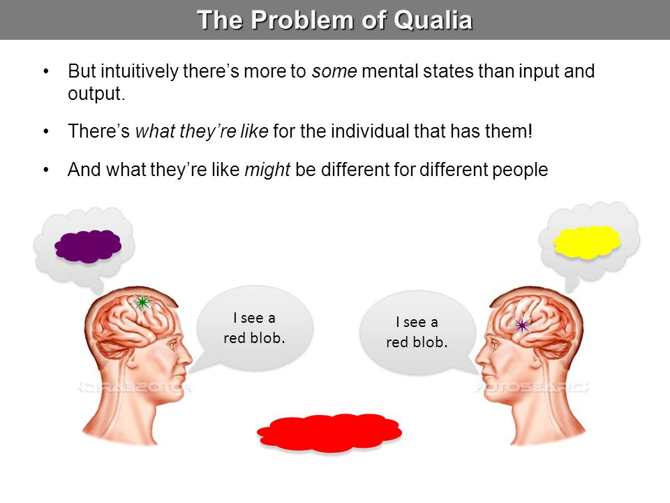 The Problem of Qualia But intuitively there's more to some mental states than input and output.