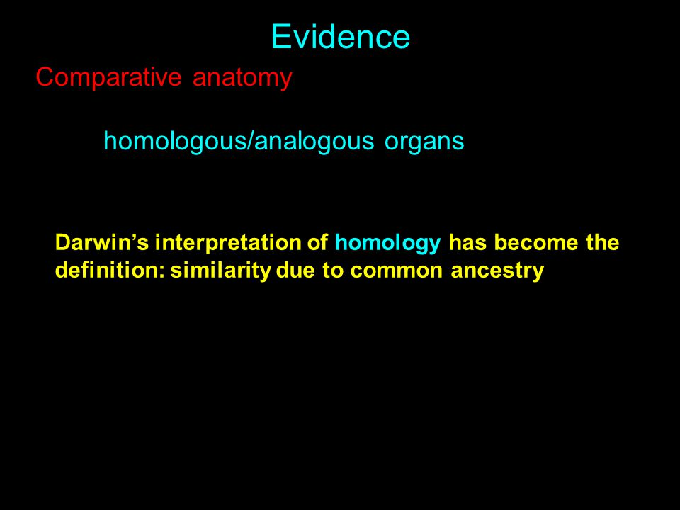 Evidence Comparative anatomy homologous/analogous organs Darwin's interpretation of homology has become the definition: similarity due to common ances