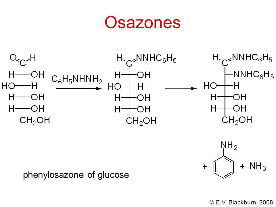 © E.V. Blackburn, 2008 Osazones phenylosazone of glucose