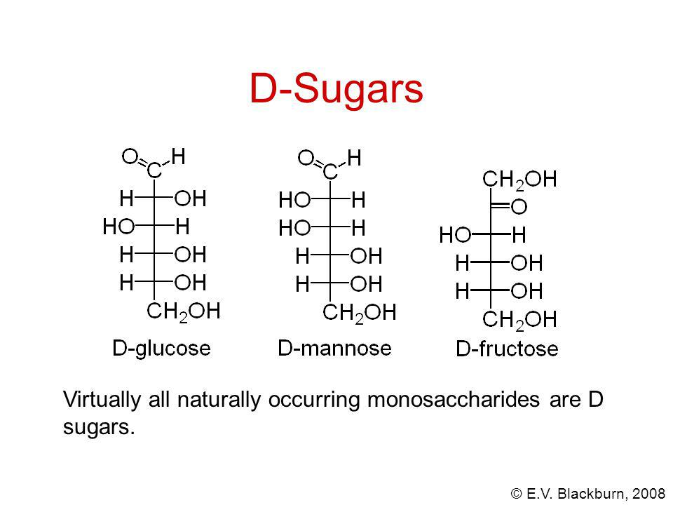 © E.V. Blackburn, 2008 D-Sugars Virtually all naturally occurring monosaccharides are D sugars.