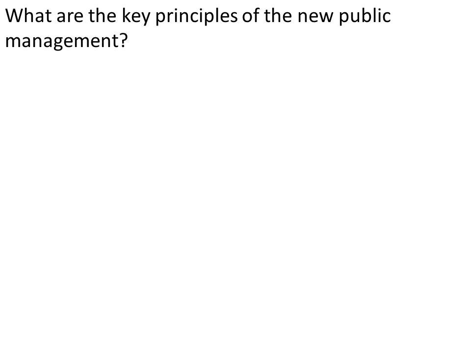 What are the key principles of the new public management?