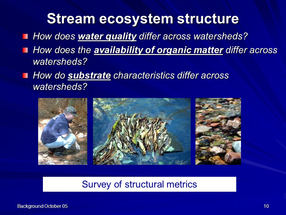 Background October 0510 Stream ecosystem structure How does water quality differ across watersheds.
