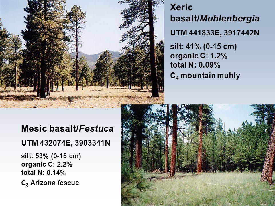 Mesic basalt/Festuca UTM 432074E, 3903341N silt: 53% (0-15 cm) organic C: 2.2% total N: 0.14% C 3 Arizona fescue Xeric basalt/Muhlenbergia UTM 441833E, 3917442N silt: 41% (0-15 cm) organic C: 1.2% total N: 0.09% C 4 mountain muhly