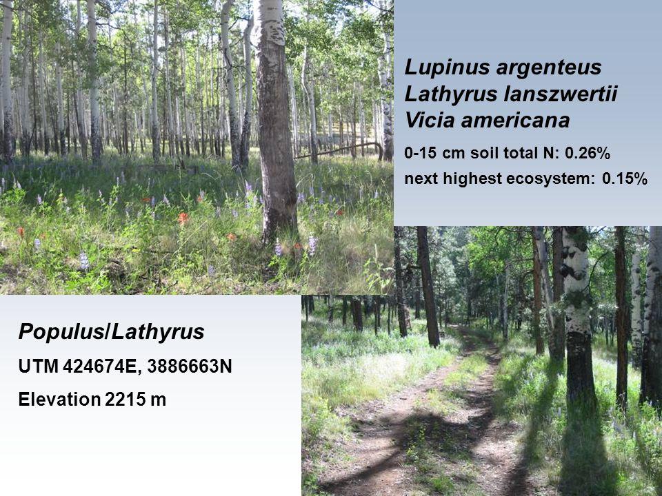 Lupinus argenteus Lathyrus lanszwertii Vicia americana 0-15 cm soil total N: 0.26% next highest ecosystem: 0.15% Populus/Lathyrus UTM 424674E, 3886663N Elevation 2215 m