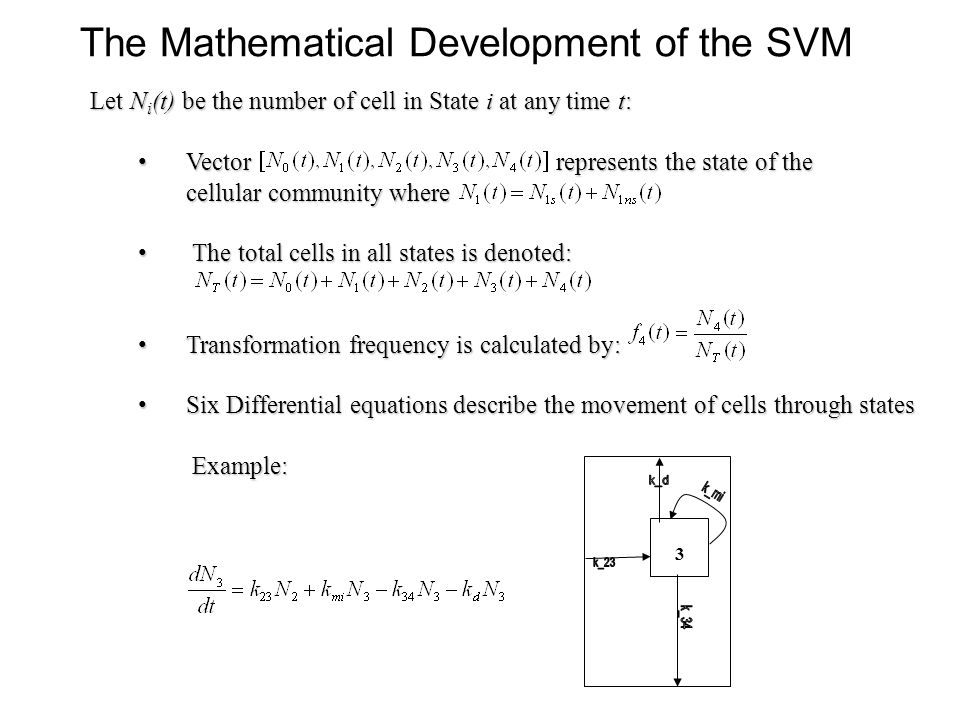 3 The Mathematical Development of the SVM Let N i (t) be the number of cell in State i at any time t: Vector represents the state of the Vector represents the state of the cellular community where cellular community where The total cells in all states is denoted: The total cells in all states is denoted: Transformation frequency is calculated by: Transformation frequency is calculated by: Six Differential equations describe the movement of cells through states Six Differential equations describe the movement of cells through states Example: Example: