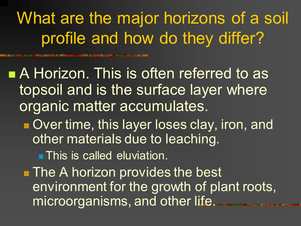 What are the major horizons of a soil profile and how do they differ? A Horizon. This is often referred to as topsoil and is the surface layer where o