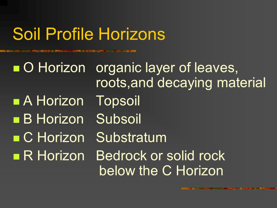 Soil Profile Horizons O Horizon organic layer of leaves, roots,and decaying material A Horizon Topsoil B HorizonSubsoil C Horizon Substratum R Horizon