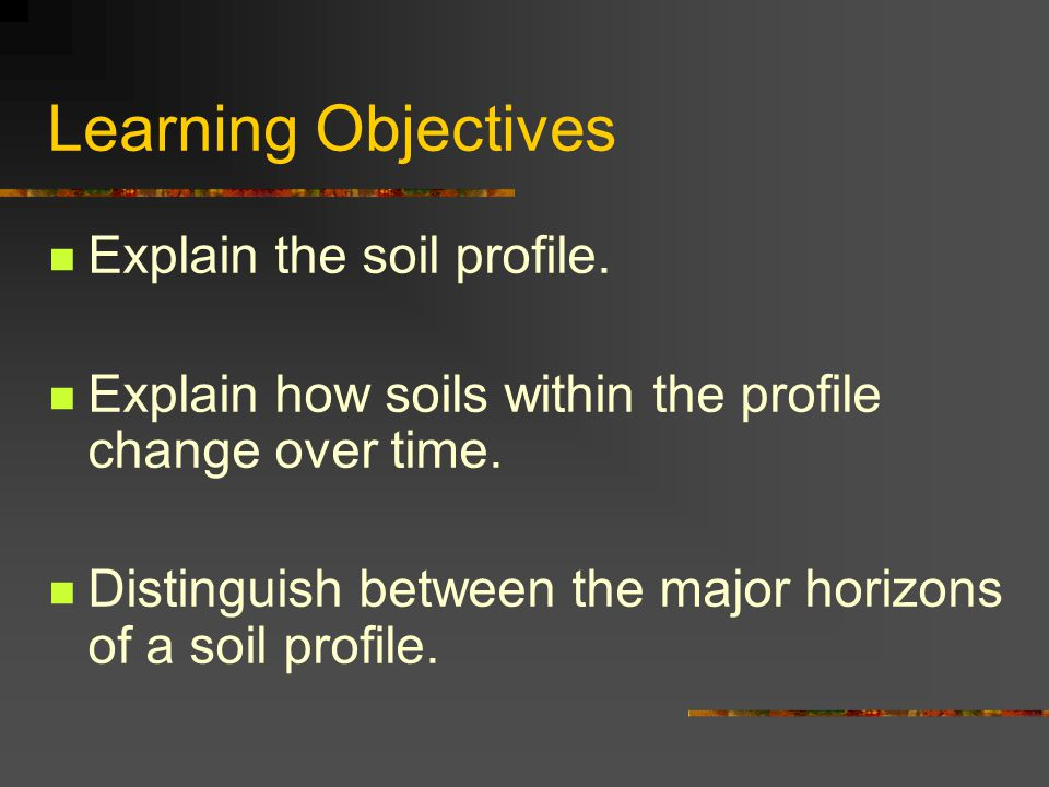 Learning Objectives Explain the soil profile. Explain how soils within the profile change over time. Distinguish between the major horizons of a soil