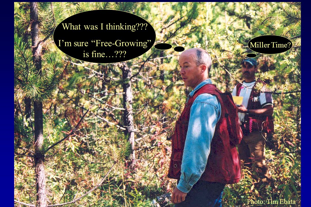 "What was I thinking??? I'm sure ""Free-Growing"" is fine…??? Miller Time? Photo: Tim Ebata"