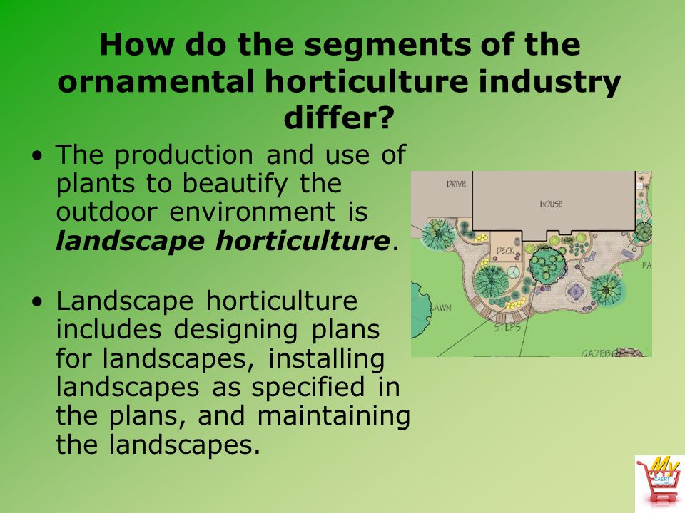 How do the segments of the ornamental horticulture industry differ? The production and use of plants to beautify the outdoor environment is landscape