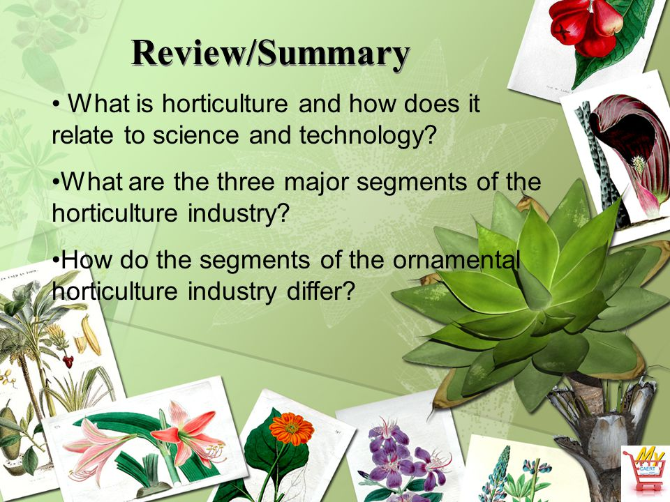 Review/Summary What is horticulture and how does it relate to science and technology? What are the three major segments of the horticulture industry?