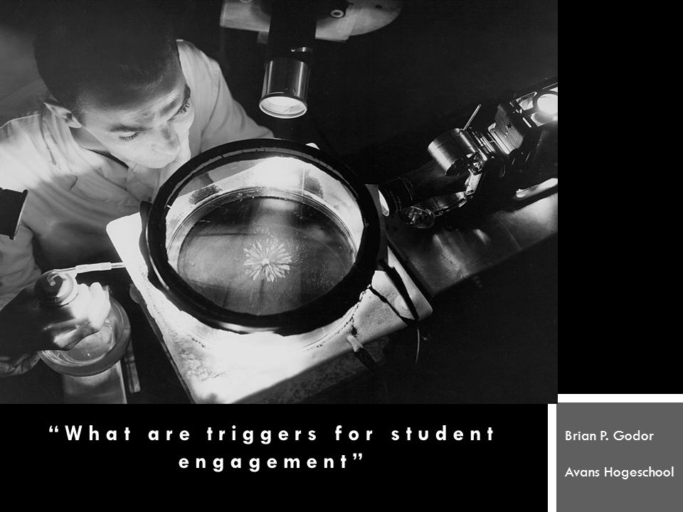 What are triggers for student engagement Brian P. Godor Avans Hogeschool