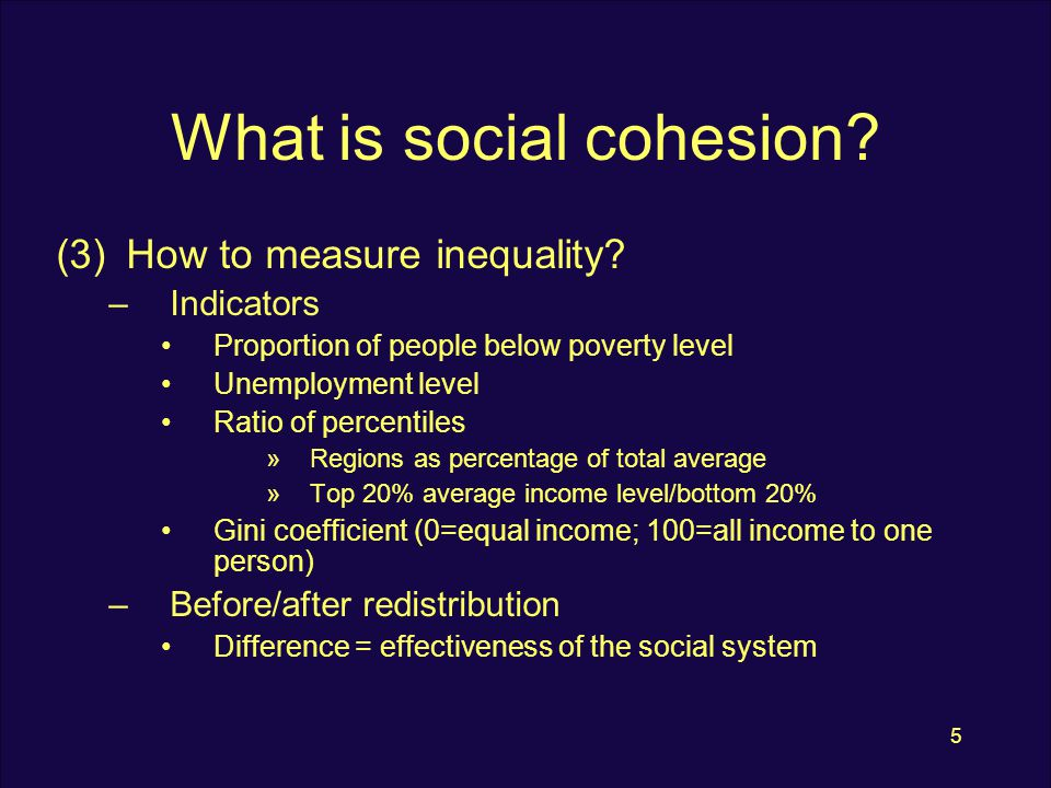 5 What is social cohesion. (3)How to measure inequality.