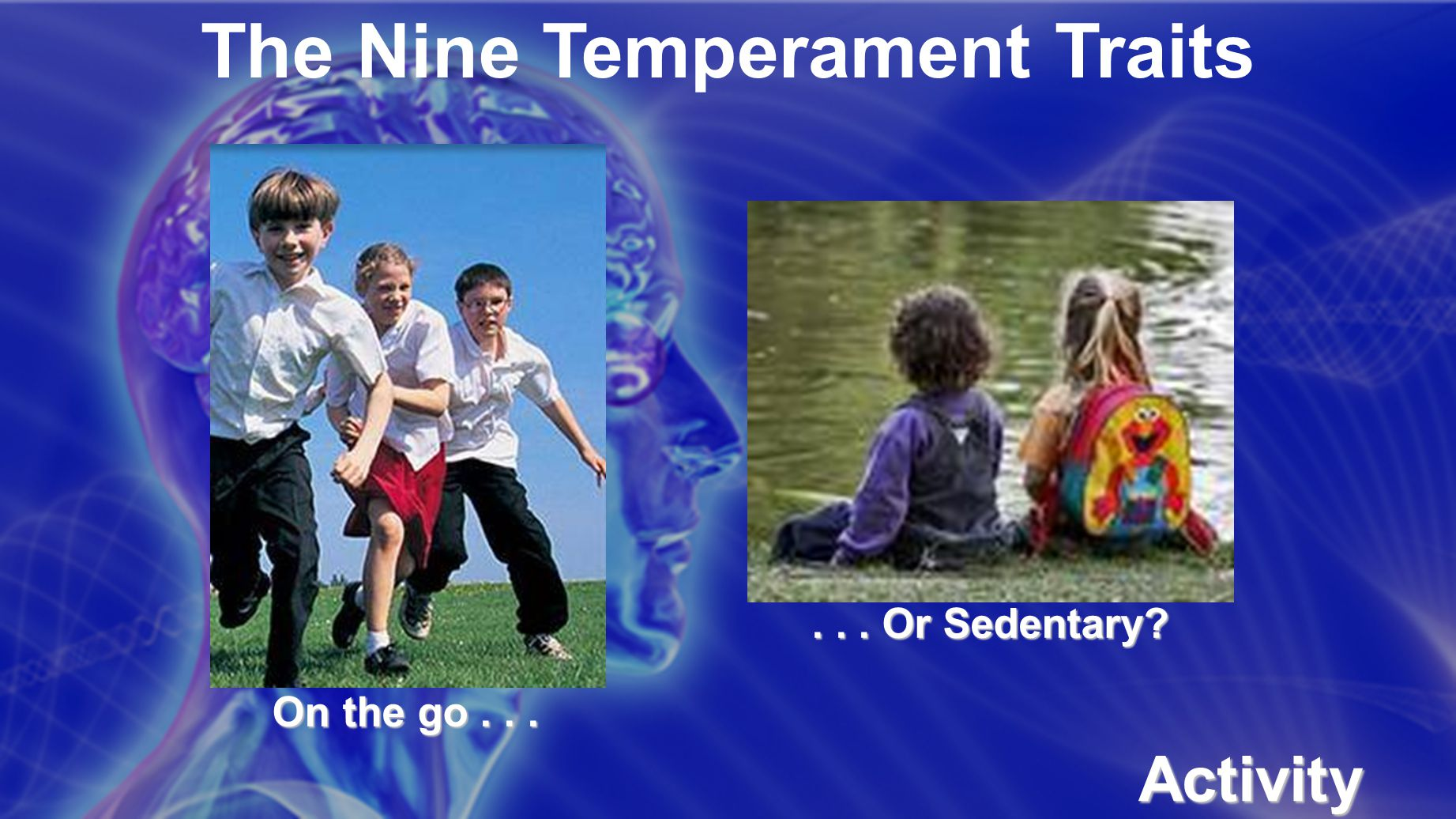 The Nine Temperament Traits Activity Level On the go...... Or Sedentary