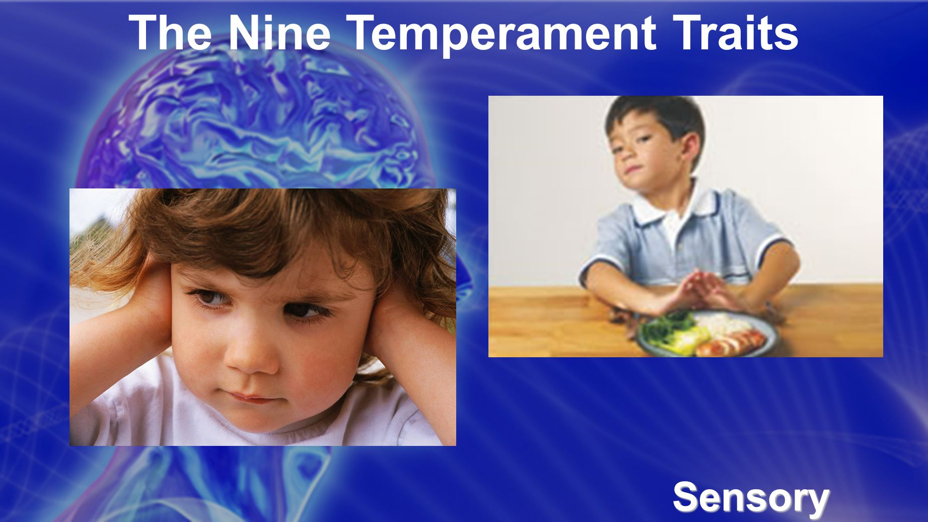 The Nine Temperament Traits Sensory Threshold