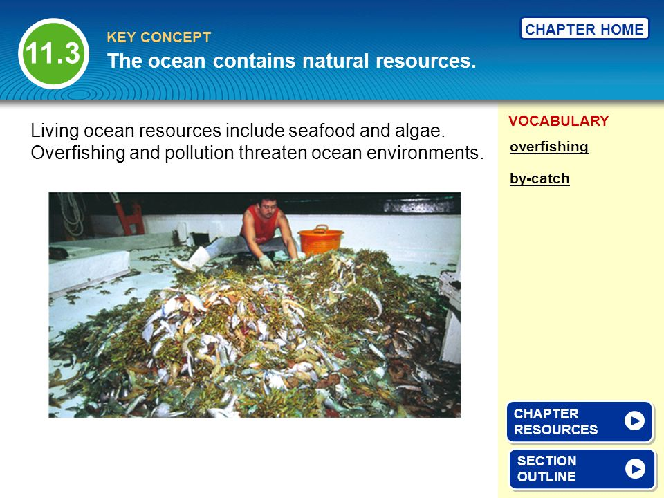 VOCABULARY KEY CONCEPT CHAPTER HOME SECTION OUTLINE SECTION OUTLINE The ocean contains natural resources. overfishing by-catch Living ocean resources