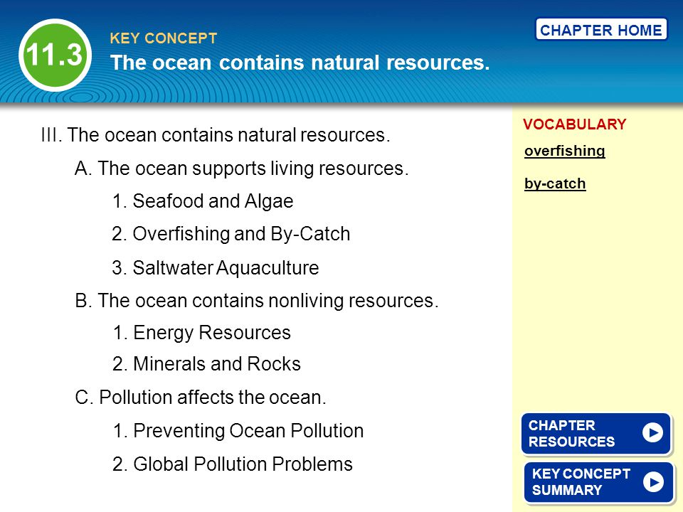 VOCABULARY KEY CONCEPT CHAPTER HOME III. The ocean contains natural resources. A. The ocean supports living resources. 2. Overfishing and By-Catch KEY