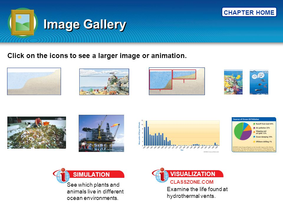 CHAPTER HOME Image Gallery Click on the icons to see a larger image or animation. See which plants and animals live in different ocean environments. S
