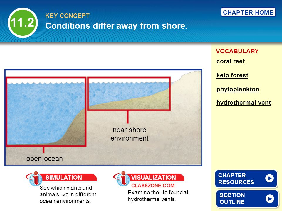 VOCABULARY KEY CONCEPT CHAPTER HOME II.Conditions differ away from shore.
