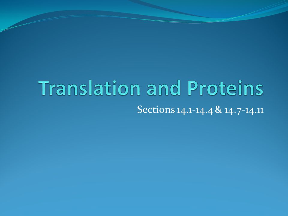 TRANSLATION Charging tRNA A.20 Aminoacyl tRNA synthetases {aminoacylation} B.