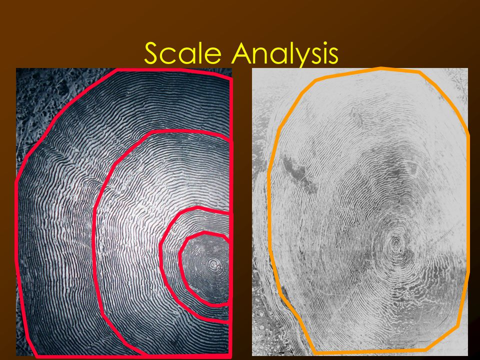 Scale Analysis