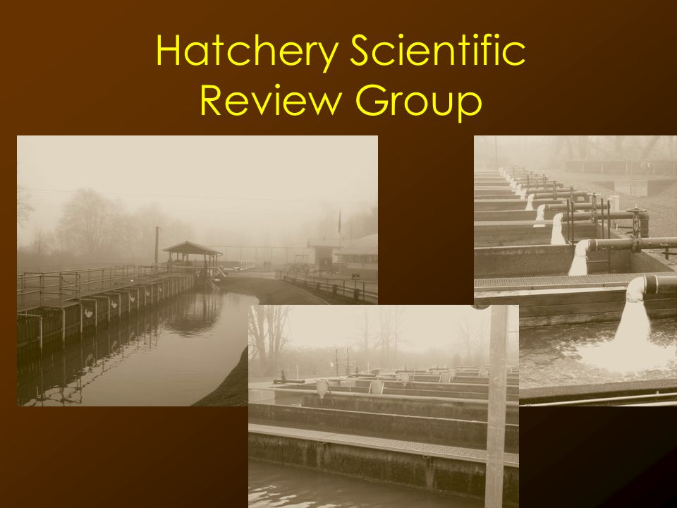 Hatchery Scientific Review Group