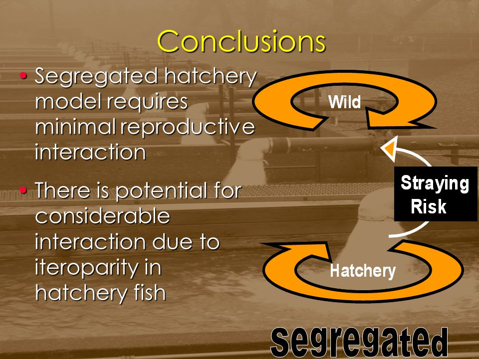 Conclusions Segregated hatchery model requires minimal reproductive interactionSegregated hatchery model requires minimal reproductive interaction The