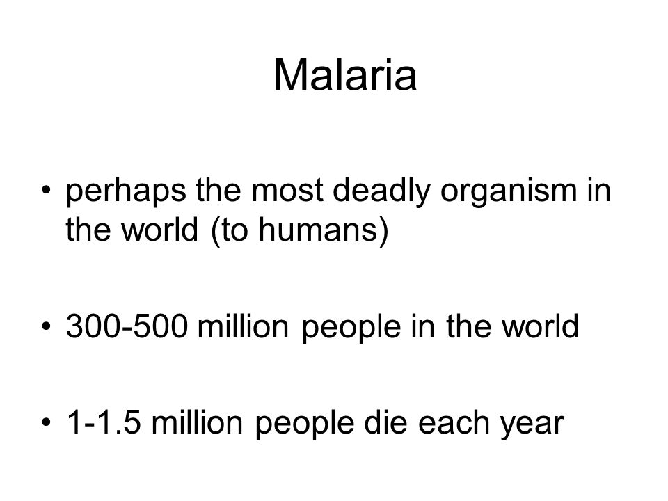 Malaria perhaps the most deadly organism in the world (to humans) 300-500 million people in the world 1-1.5 million people die each year