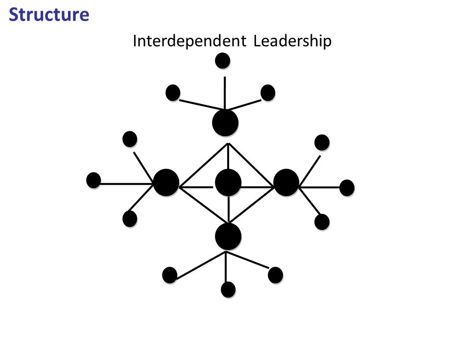 Structure Interdependent Leadership