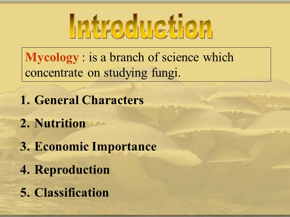 Mycology : is a branch of science which concentrate on studying fungi. 1. General Characters 2. Nutrition 3. Economic Importance 4. Reproduction 5. Cl