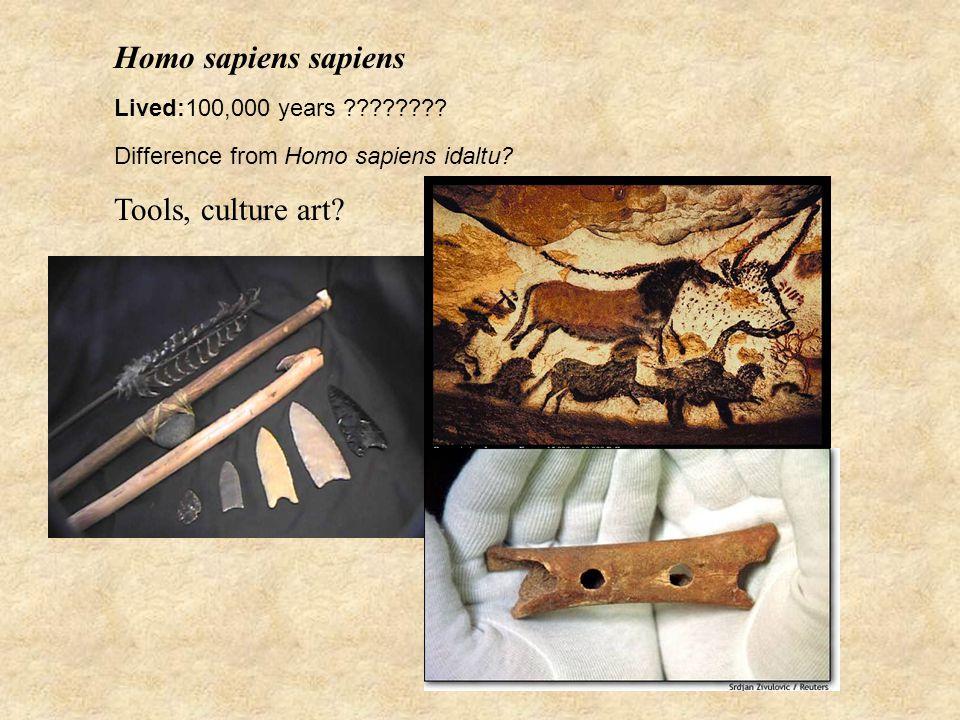 Homo sapiens sapiens Lived:100,000 years . Difference from Homo sapiens idaltu.