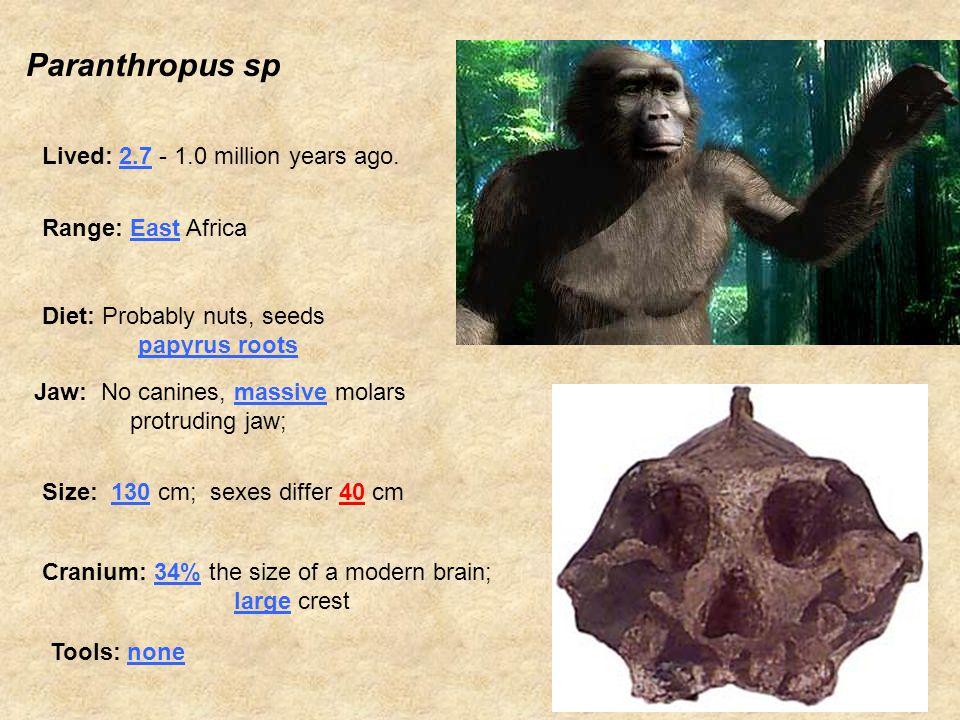 Homo habilis: Lived: 2.2 - 1.6 million years ago.Range: East & south Africa.