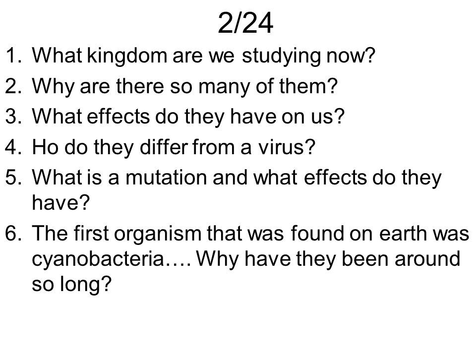 2/24 1.What kingdom are we studying now? 2.Why are there so many of them? 3.What effects do they have on us? 4.Ho do they differ from a virus? 5.What