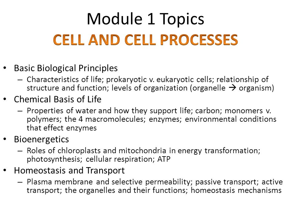 Module 1 Topics