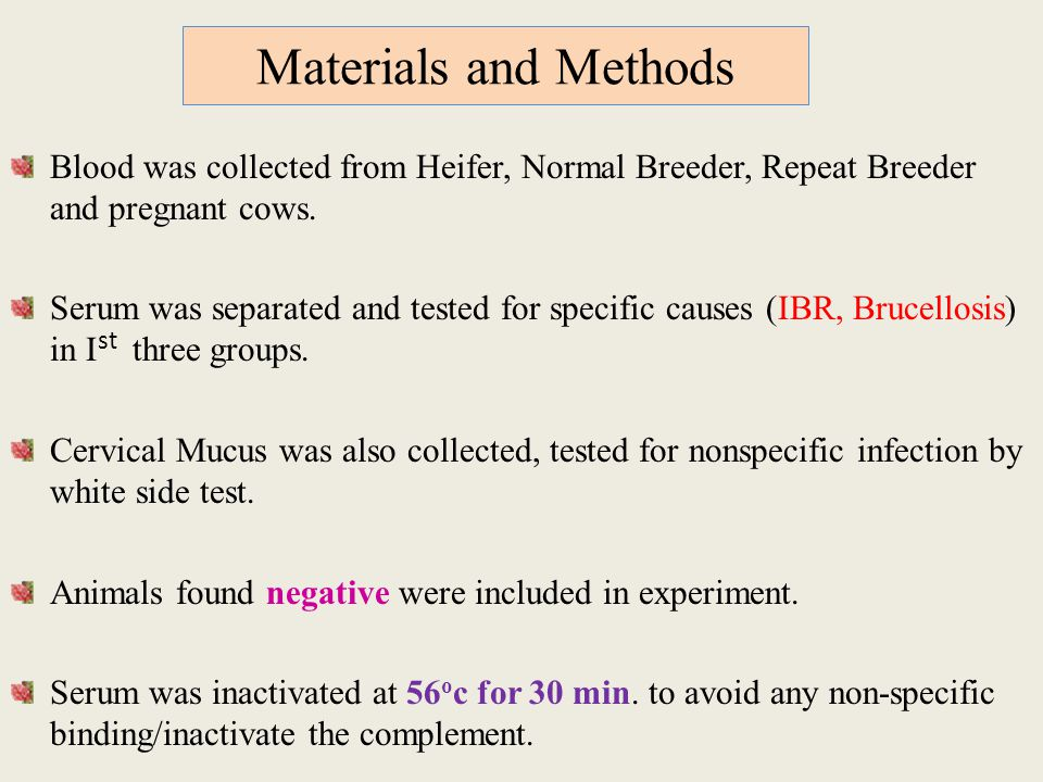 Materials and Methods Blood was collected from Heifer, Normal Breeder, Repeat Breeder and pregnant cows.