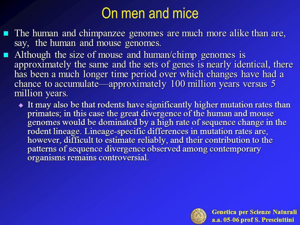 Genetica per Scienze Naturali a.a. 05-06 prof S. Presciuttini On men and mice The human and chimpanzee genomes are much more alike than are, say, the