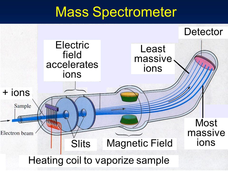 Mass Spectrometer Magnetic Field Detector Heating coil to vaporize sample + ions Electric field accelerates ions Slits Least massive ions Most massive