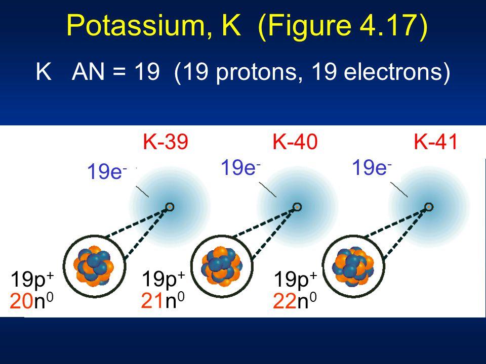 Potassium, K (Figure 4.17) K AN = 19 (19 protons, 19 electrons) 19e - 19p + 20n 0 19p + 20n 0 19p + 21n 0 19p + 22n 0 K-39 K-40 K-41
