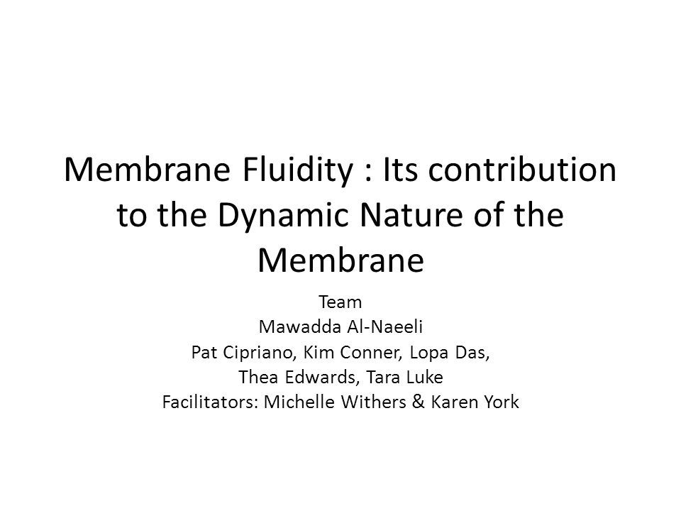 Membrane Fluidity : Its contribution to the Dynamic Nature of the Membrane Team Mawadda Al-Naeeli Pat Cipriano, Kim Conner, Lopa Das, Thea Edwards, Tara Luke Facilitators: Michelle Withers & Karen York