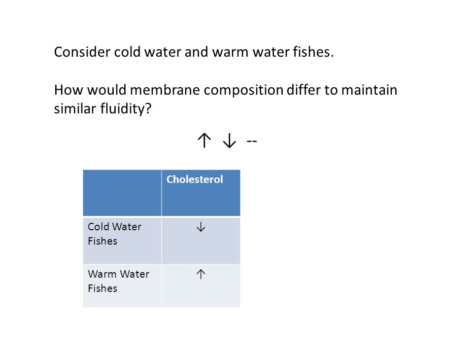 CholesterolUnsaturated Fatty Acids Saturated Fatty Acids Cold Water Fishes ↓↑↓ Warm Water Fishes ↑↓↑ Consider cold water and warm water fishes.